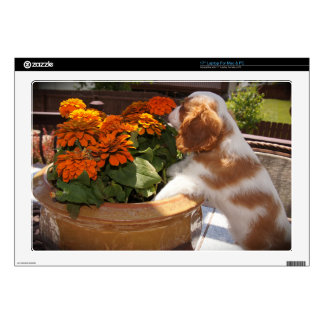Cavalier King Charles Spaniel Flowers Skin For Laptop
