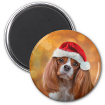 Cavalier King Charles Spaniel in red hat of Santa Magnet