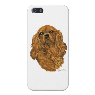 Cavalier King Charles Spaniel iPhone 5 Cases