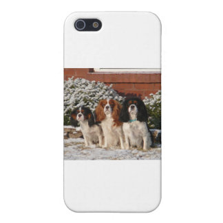 Cavalier King Charles Spaniel iPhone SE/5/5s Case