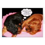 Cavalier King Charles Spaniel Let's Share Care Greeting Card