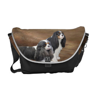 Cavalier King Charles Spaniel Courier Bags