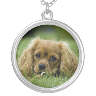 Cavalier King Charles Spaniel Necklace Ruby