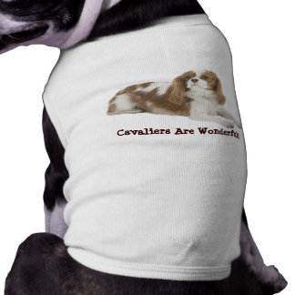 Cavalier King Charles Spaniel Pet Clothing