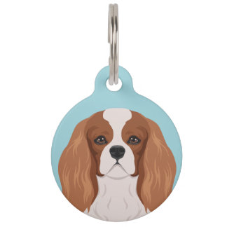 Cavalier King Charles Spaniel Pet Tag