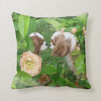 Cavalier King Charles Spaniel Throw Pillows