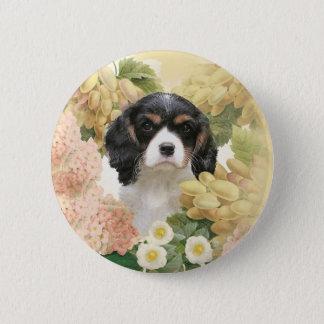 Cavalier King Charles Spaniel Pinback Button