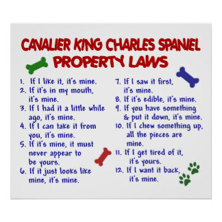 CAVALIER KING CHARLES SPANIEL PL2 POSTERS