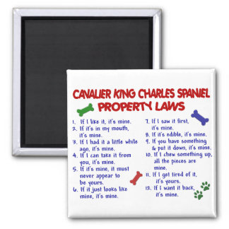CAVALIER KING CHARLES SPANIEL Property Laws 2 2 Inch Square Magnet