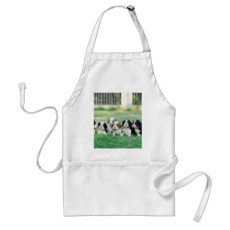 Cavalier King Charles Spaniel puppies Adult Apron
