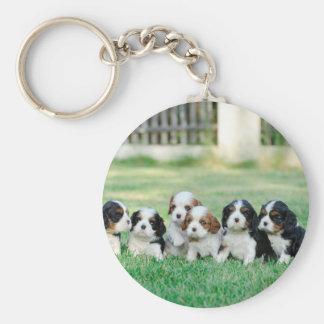 Cavalier King Charles Spaniel puppies Keychain