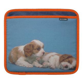 Cavalier King Charles Spaniel Puppies Rickshaw Sle Sleeve For iPads