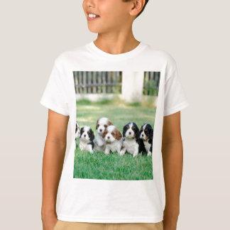 Cavalier King Charles Spaniel puppies T-Shirt
