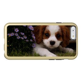 Cavalier King Charles Spaniel Puppy behind flowers Incipio Feather Shine iPhone 6 Case
