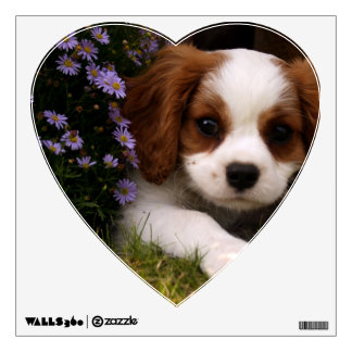 Cavalier King Charles Spaniel Puppy behind flowers Wall Graphics
