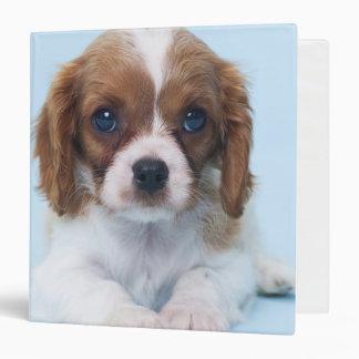 Cavalier King Charles Spaniel Puppy Binder