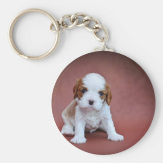 Cavalier King Charles Spaniel puppy Keychains