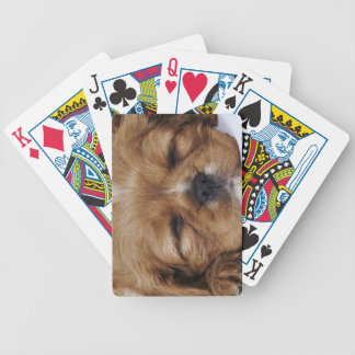Cavalier King Charles Spaniel puppy sleeping Bicycle Playing Cards