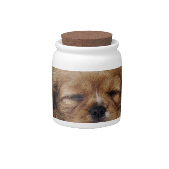 Cavalier King Charles Spaniel puppy sleeping Candy Dishes