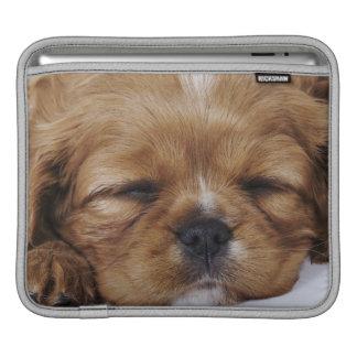 Cavalier King Charles Spaniel puppy sleeping iPad Sleeves