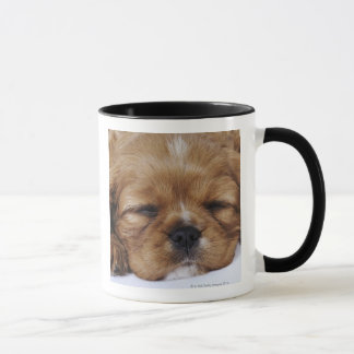 Cavalier King Charles Spaniel puppy sleeping Mug