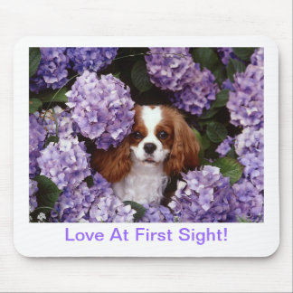 Cavalier King Charles Spaniel Red and White Mouse Pad