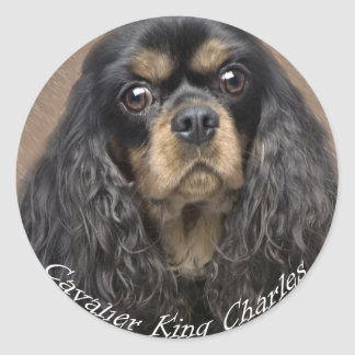 Cavalier King Charles Spaniel Stickers