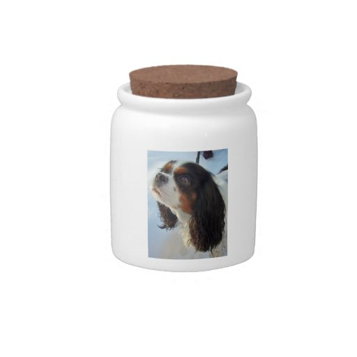 Cavalier King Charles Spaniel Tri-Colored Candy Ja Candy Jar