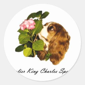 Cavalier King Charles Spaniel With Flower Classic Round Sticker