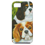 Cavalier King Charles Spaniels Portrait iPhone SE/5/5s Case