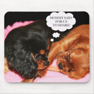 Cavalier King Charles Spaniels Puppies Mouse Pad