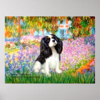Cavalier King Charles (tri color) - Garden Poster