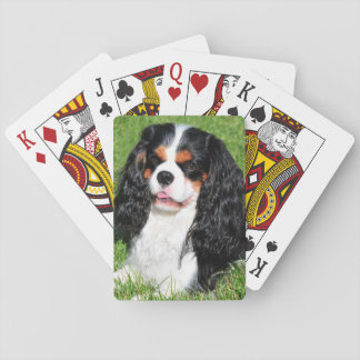 Cavalier King Charles Tri-Color Playing Cards