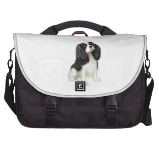 Cavalier King Charles - Tri Colored Bags For Laptop