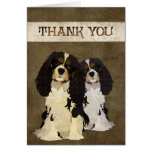 Cavalier King Dogs Thank You  Card