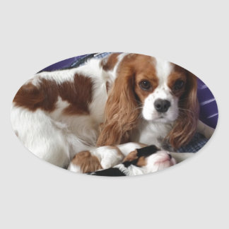 Cavalier Mom and Babies Oval Sticker