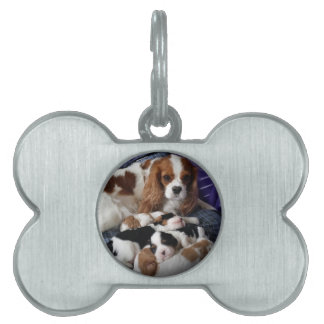 Cavalier Mom and Babies Pet Name Tag