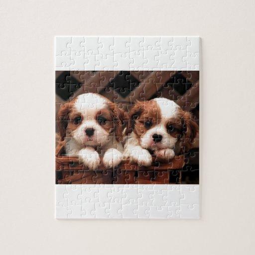 Cavalier Puppies Jigsaw Puzzles