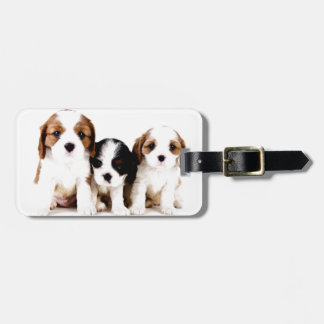 Cavalier Puppies Tags For Bags