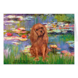 Cavalier (Ruby7) - Lilies 2 Greeting Cards
