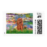 Cavalier (Ruby7) - Lilies 2 Stamps
