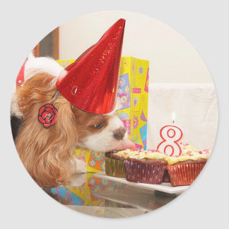 Cavalier Spaniel 8th Birthday Classic Round Sticker