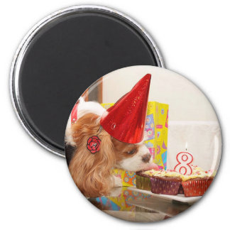 Cavalier Spaniel 8th Birthday Magnet