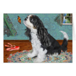 Cavalier Spaniel that wants to dance Card