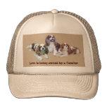 Cavalier Threesome Hat