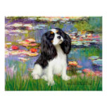 Cavalier (Tri Colored 5) - Lilies 2 Posters