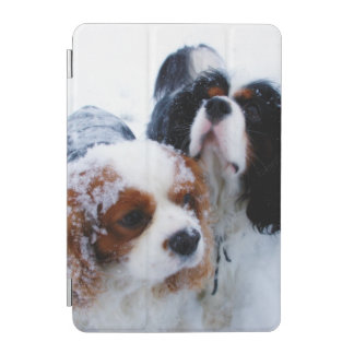 Cavaliers in the Snow iPad mini Cover