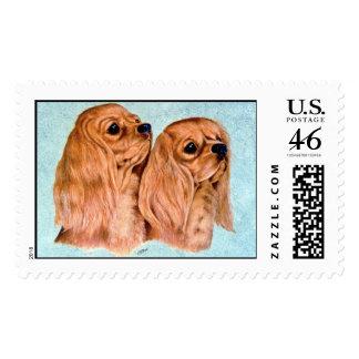 Cavaliers Postage Stamp