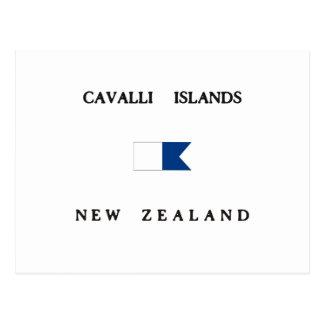 Cavalli Islands New Zealand Alpha Dive Flag Postcard
