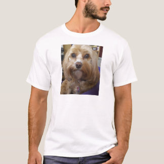 Cavapoo or Cavadoodle products T-Shirt